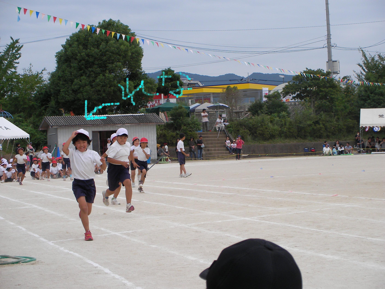 Sany00462